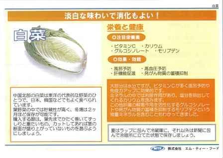 栄養教室_20131222_chinesecabbage_01