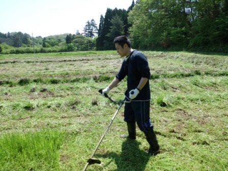 住民の畑草刈_r.JPG